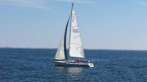 One of many sailboats that were on the water. Photo Credit: Al Vardaro