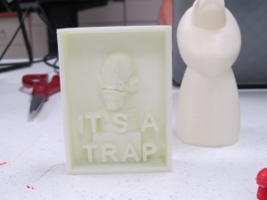 One of the results from a 3-D printer!