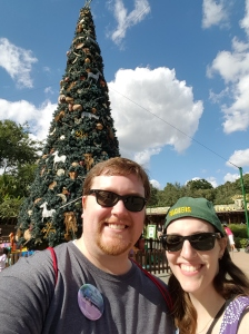 Animal Kingdom Christmas Tree. Every park had a huge tree, and they were all different!