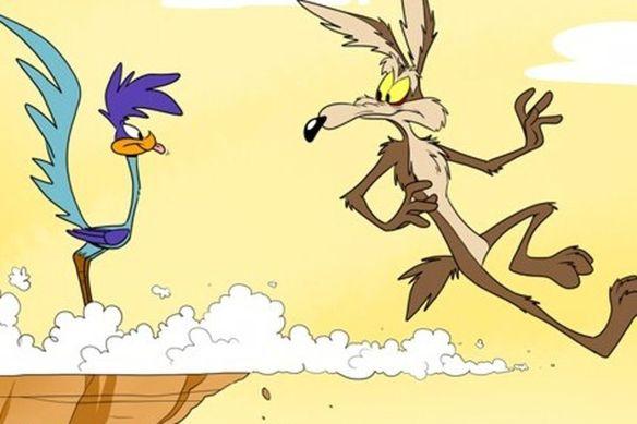 Coyote - vox
