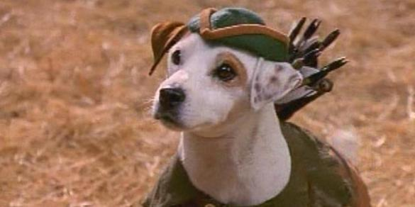 Wishbone - huffingtonpost