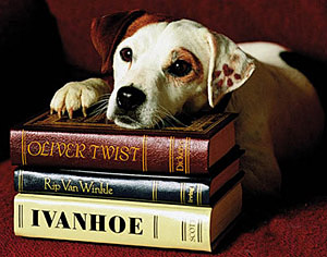 Wishbone - tvtropes