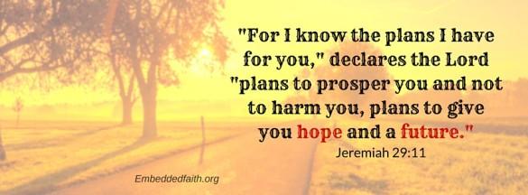 Jeremiah 29-11 - embeddedfaith
