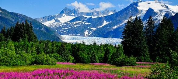 Alaska - mcl