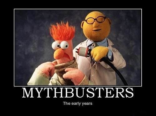 muppet-mythbusters