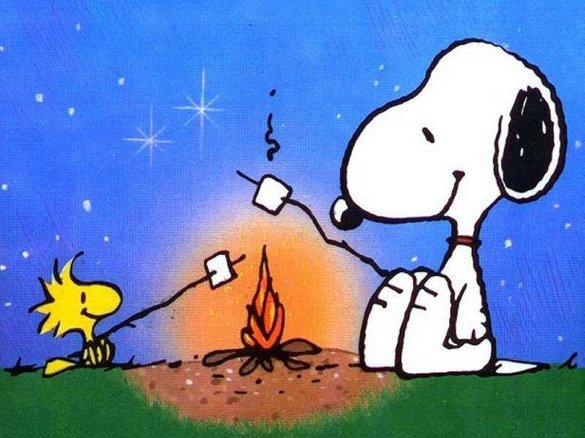 snoopy_and_woodstock_camping