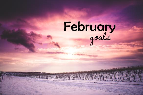 february2015goals