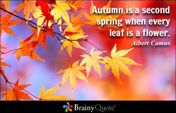 Fabulous-Autumn-Quotes