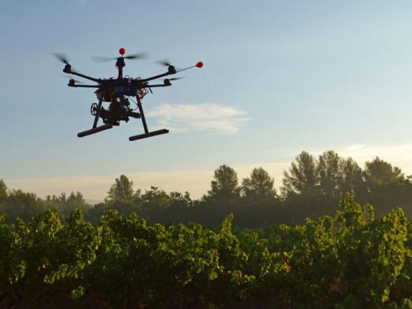 Reforestation Drones